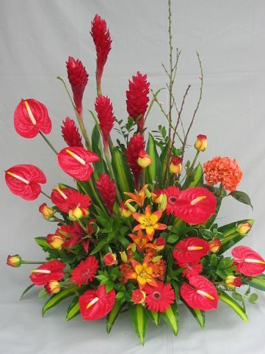 Florería Snyder - Arreglos Florales en Tlalnepantla