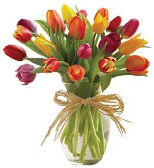 hermoso florero de 20 tulipanes en vase de vidrio 600 pesos