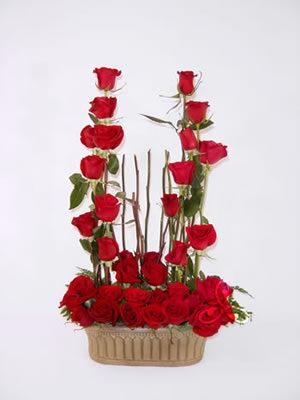 bonita jardinera de  36 rosas rojas 650 pesos