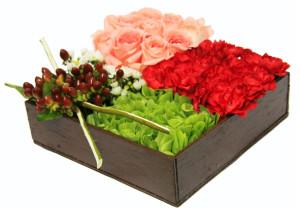 bonita jardinera de rosas clavel y campanita y cafe  550 pesos