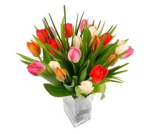 hermoso florero en vase de vidrio  con 20 tulipanes de colores  600 pesos